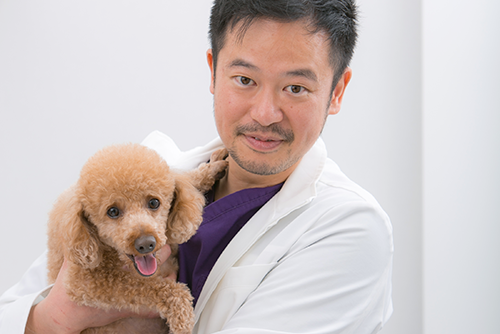 京都北山動物病院で一緒に働いてみませんか?